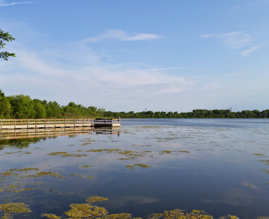 5 Things to Do in Minnesota on Vacation